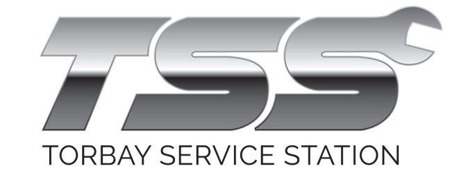 TSS_3D-logo_white-background