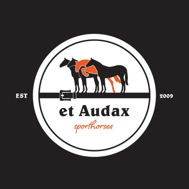 et-Audax-sporthorses_black