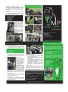 MP 3 panel Brochure